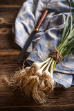 Bunch of fresh garlic. On the rustic background Royalty Free Stock Photo