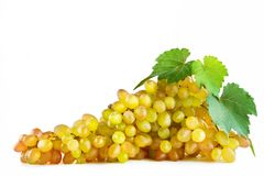 Bunch fresh grapes isolated on white background. Stock Photography