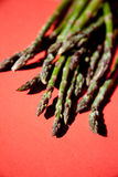 Bunch of fresh green asparagus Royalty Free Stock Photography