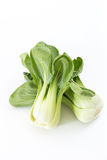 Bunch of fresh green baby bok choy, on white Royalty Free Stock Image