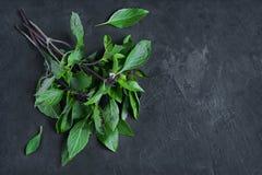 Bunch of fresh green basil Stock Photo