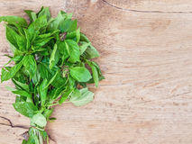 A bunch of fresh green basil Stock Photo