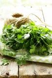 Bunch of fresh green coriander (cilantro) Stock Photo