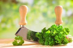 Fresh parsley with a chopping blade Stock Photography