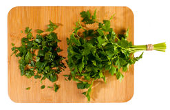 Bunch of fresh green curly parsley Royalty Free Stock Image