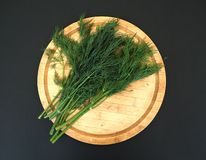 Bunch of fresh green dill on a wooden cutting board royalty free stock photos