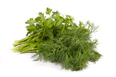 Bunch of fresh green dill and parsley Stock Images