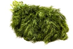 Bunch of fresh green dill on white background royalty free stock photos