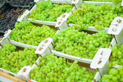 Bunch of fresh green grape in boxes in supermarket Royalty Free Stock Images