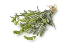 Bunch of fresh green ironwort Stock Images