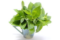 Bunch of fresh green mint in glass cup on white background Stock Image