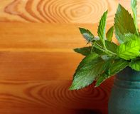 Bunch of fresh green mint leaf . Royalty Free Stock Image