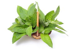Bunch of fresh green mint in wicker basket on white background Royalty Free Stock Images