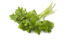 Bunch of fresh green parsley. Isolated on white background Stock Images