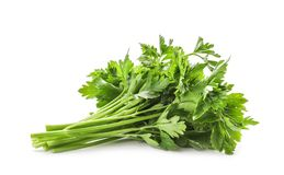 Bunch of fresh green parsley. On white background Stock Images