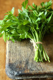 Bunch of fresh green parsley Stock Image