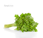 Bunch of fresh green parsley isolated on white Royalty Free Stock Photo