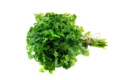 Bunch of fresh, green parsley leaves isolated on white backgroun. D. Isoleted Royalty Free Stock Photography