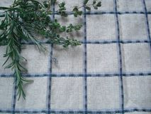 A bunch of fresh greens on a kitchen towel. Bouquet of spicy herbs, composed of rosemary, oregano, lavender. Autumn harvest from aromatic and medicinal herbs royalty free stock photo