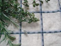 A bunch of fresh greens on a kitchen towel. Bouquet of spicy herbs, composed of rosemary, oregano, lavender. Stock Photo
