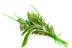 Bunch of fresh herbs Royalty Free Stock Image