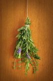 Bunch of Fresh Herbs Stock Photos