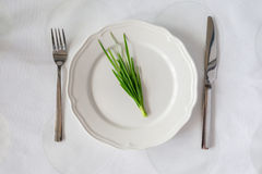 Bunch of fresh herbs on an empty plate with knife and fork. Diet Stock Image