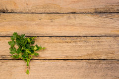 Bunch of fresh Italian Parsley tied with string on rustic wooden Royalty Free Stock Photo