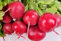 Bunch fresh juicy radish close-up on a white background. Bunch fresh juicy radish close-up on a white background Stock Photography