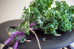 A bunch of fresh Kale salad. On a wooden table Stock Image