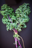 A bunch of fresh Kale salad. On a wooden table Royalty Free Stock Images