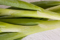 Bunch of fresh leeks or scallions. Overhead view of a bunch of fresh leafy leeks or scallions lying on white painted wooden boards Stock Photos