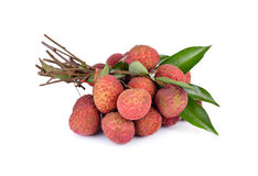 Bunch of fresh Lychees with leaves and stem on white background Royalty Free Stock Photos
