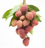 A bunch of fresh lychees on white background Royalty Free Stock Photos