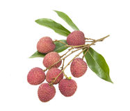 A bunch of fresh lychees on white background Royalty Free Stock Photo