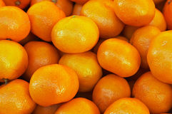 Bunch of fresh mandarin oranges Royalty Free Stock Images