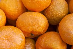 Bunch of fresh mandarin oranges Stock Image