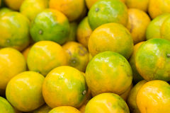 Bunch of fresh mandarin oranges Royalty Free Stock Photography