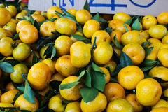 Bunch of fresh mandarin oranges Stock Photography