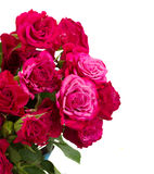 Bunch of  fresh mauve roses Royalty Free Stock Image