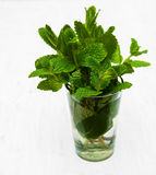 Bunch of fresh mint. In a glass of water on a white background Royalty Free Stock Photography