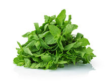Bunch of fresh mint Stock Photo
