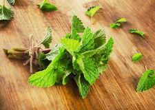 Bunch of Fresh mint leaves on  rustic wooden board. Stock Image