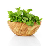 Bunch of fresh mint in wood bowl Royalty Free Stock Image
