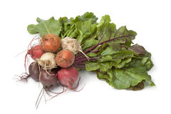 Bunch of fresh mixed color beets. On white background Stock Images