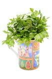 Bunch of fresh and natural parsley in colorful cup. White background Stock Photo