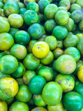 Bunch of fresh oranges in the market,Orange group background Royalty Free Stock Image