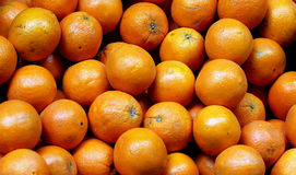 Bunch of fresh  oranges Royalty Free Stock Images