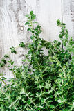 Bunch of fresh oregano. On wooden background Royalty Free Stock Images