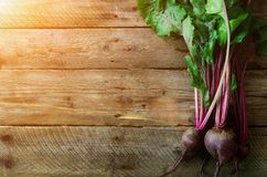 Bunch of fresh organic beetroot on wooden background. Concept of diet, raw, vegetarian meal. Farm, rustic and country. Style Stock Image